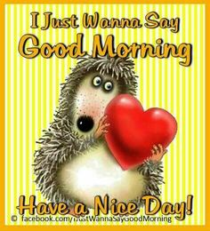 Good Morning For Her, Good Morning Sunshine, Day For Night, G Morning, Pretty Pictures, Sayings, Quotes, Cute Pics, Quotations