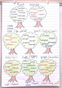 root words anchor chart, vocabulary instruction
