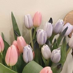 Tulips Flowers, My Flower, Planting Flowers, Beautiful Flowers, Pink Tulips, Cactus Flower, Flowers Garden, Exotic Flowers, Yellow Roses