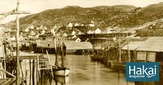 Old Coast, New Coast: Petty Harbour, Newfoundland | Hakai Magazine