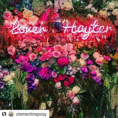 Beautiful shot     #Repost @clementineposy with @repostapp  ・・・  Something bright for a bit of a dreary morning.. our beautiful Emma + Russell's vegas meets floral ceremony backdrop   #loverhayter #lovelocalmacarthur #imadethatposyfamous #clementineposy #bridalbouquet #lovelocalcamden #weddingflowerssydney #southernhighlandswedding#florist #sydneyflorist #lovelocalclementine #flowerdelivery #houseflowers #treatyoself #sydneyflowers