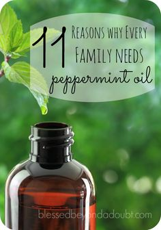 There are so many wonderful peppermint oil uses that there would be no way for me to mention all of them without exhausting and overwhelming you. As we began our essential oil journey, I was a little apprehensive because I just didn't know what to expect. I was doing a great length of research before …