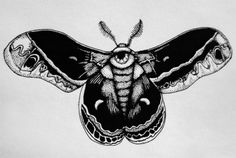 Illustration art mine Black and White eyes made by me My art morbid drawings pen goth Macabre tattoo design moth moths occult insects pen and ink Snaketoes Ghostplops