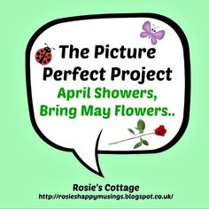 Rosie's Cottage: The Picture Perfect Project: April Showers Bring May Flowers <3