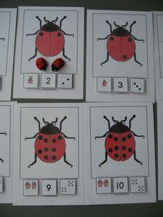 Insecten kringactiviteiten » Juf Sanne