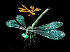 Wesley Fleming's world of insects – Ovalme