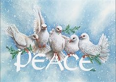 Be at peace.giving to the light and sharing a vision of cheerful fruitful times