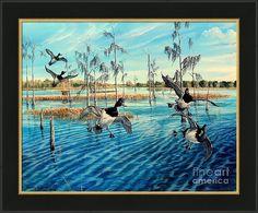 Lake Okeechobee Framed Print featuring the painting Lake Okeechobee - Ringed Neck Ducks by Daniel Butler