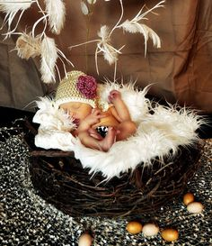 """This is a """"nest"""" photo-prop you can actually buy. Is there a way I can use this in place of a carseat?"""