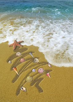 Christmas Washed Up on Shore.  Pink seashell ornaments, sighhhh!