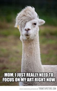 Misunderstood artist alpaca. I read this in a deep teenage voice omg