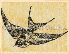 Printable Sparrow Bird Digital Download for by QuiveringBeeStudios, $2.00