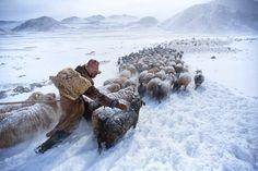 Altay Dağları, Bayan Olgii Aimag, Mongolistan