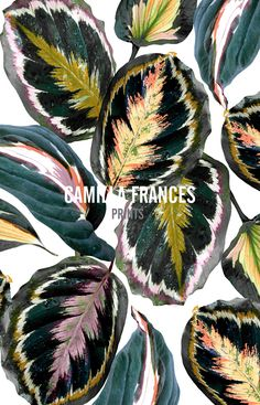 Camilla Frances Prints Textile Prints, Textile Patterns, Cool Patterns, Print Patterns, Floral Prints, Floral Illustrations, Illustration Art, Tropical Pattern, Watercolor Leaves