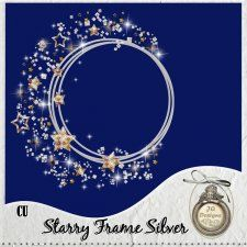 Starry Frame Silver