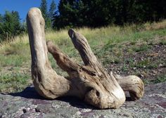 Driftwood Decorative Driftwood Driftwood by CreationsByDevlin, $22.00
