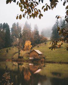 Photography Landscape Country Adventure New Ideas Beautiful World, Beautiful Places, Beautiful Pictures, Fall Inspiration, Autumn Aesthetic, Autumn Cozy, Cabins In The Woods, Land Scape, Autumn Leaves