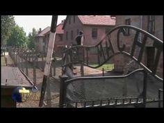 VIDEO: Papa Francisco reza en silencio en campo de concentración de Auschwitz