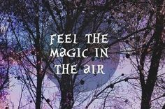 WINGS book series by Aprilynne Pike - a new kind of faerie tale ♡