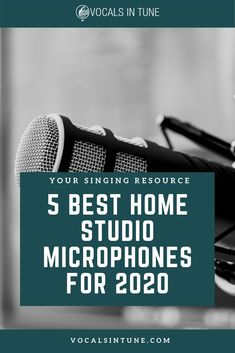 The 5 Best Home Studio Microphones of 2020 - Vocals in Tune Home Recording Studio Setup, Recording Studio Microphone, Home Studio Music, Christmas Gifts For Music Lovers, Gift For Music Lover, Guitar Gifts, Recorder Music, Singing Tips, Music Theory