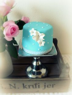 Aqua Mini Cake