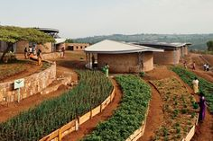 Architectural designer Sharon Davis helps to create a forward-thinking educational and community center in Kayonza to train and educate local women through farming