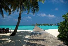 океан, песок, лето, Мальдивы, пляж, пальмы