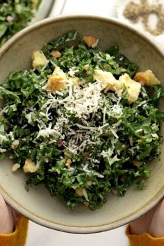 Toasted Bread and Parmesan Kale Salad Pinch of Yum is part of Kale salad - This is THE BEST Kale Salad! Lots of shredded kale, Parmesan cheese, homemade breadcrumbs, and a lemon olive oil dressing So simple, SO GOOD Gourmet Recipes, Vegan Recipes, Dinner Recipes, Cooking Recipes, Cooking Fish, Vegan Meals, Healthy Salads, Healthy Eating, Healthy Soup