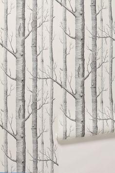 Woods Wallpaper - Anthropologie.com
