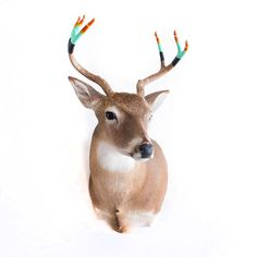 Taxidermy Deer with Hand Dipped Painted Antlers by castandcrew