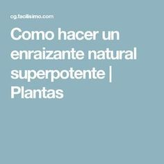 Como hacer un enraizante natural superpotente | Plantas