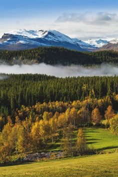 Valdres, Norway | Roger Samdal ….Stay cheap and comfortable on your stopover in Oslo: www.airbnb.com/rooms/1036219?guests=2&s=ja99 and https://www.airbnb.com/rooms/6808361