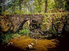 Dolanský rybník, Stvolínky u ČL