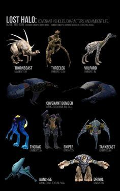 """The Sharquoi (listed as """"Drinol"""") with other deleted content from pre-Halo: Combat Evolved."""