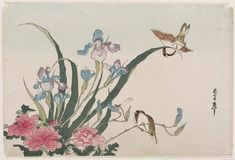 ris, Peonies, Sparrows, and Dragonfly 杜若、牡丹、雀  Japanese Meiji era ? Artist Unknown, Japanese, After Katsushika Taito II (Japanese, active about 1810–1853), Forgery of Katsushika Hokusai (Japanese, 1760–1849)