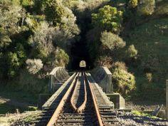 "The Twenty Tunnel Tour from Taumarunui to Whangamomona aboard personal ""golf carts"" Adventure Tours, Beautiful Architecture, Commonwealth, Golf Carts, Railroad Tracks, New Zealand, Scenery, Boat, France"