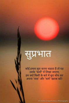 904 Best Hindi Quotes Images In 2019 Hindi Quotes Manager Quotes