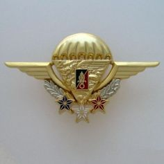 FRENCH FOREIGN LEGION ETRANGERE 2REP NUMBERED HIGH-ALTITUDE PARACHUTE INSTRUCTOR French Foreign Legion, Paratrooper, Military Service, Special Forces, Armed Forces, Badge, Legion 2, Weapons, Inspirational