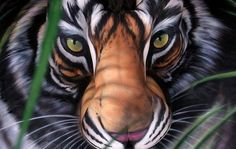 ~ Tiger Body Art ~ composed of a man, a woman & 2 children. Amazing!