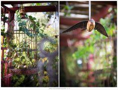 The enchanted garden Enchanted Garden, Garden Styles, Bird Feeders, Fairytale, Photoshoot, Outdoor Decor, Artist, Flowers, Photography