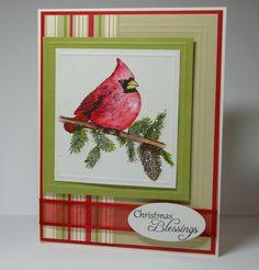 cardinal christmas card stampin up   Christmas Cardinal