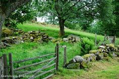 stenmur Places Around The World, Around The Worlds, Stone Walls, Fences, Garden Inspiration, Butterflies, Pergola, Porch, Beautiful Places