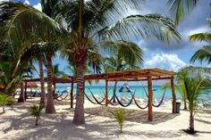 Hammocks on the Beach with the Fury Catamaran Tour in Cozumel Mexico