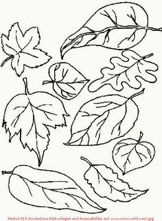 google image result for http://www.lmsugarbush/images/757kidspagemapleleaf   tattoo