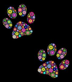 Stock Vector illustration of floral animal paw print on black background Stock Photo - 14557216 Dot Art Painting, Cat Quilt, Button Art, Cat Tattoo, Mandala Art, Rock Art, Cat Art, Black Backgrounds, Painted Rocks