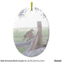 Baby Swensain Hawk ceramic oval ornament