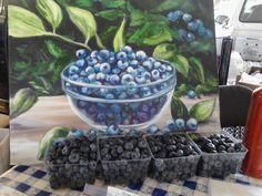 Blueberries-still life & still life