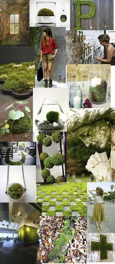 What a light!: verde musgo / moss green