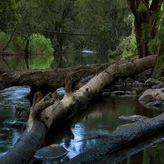 Goodradigbee Creek