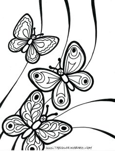 Free butterfly Coloring Page Free butterfly Coloring Page. Free butterfly Coloring Page. Coloring Pages butterfly Coloring Pages for Kids Book in butterfly coloring page Coloring Pages Butterflies Foring Free Allurepaper Co Easy Coloring Pages, Flower Coloring Pages, Coloring Pages To Print, Free Printable Coloring Pages, Coloring Pages For Kids, Coloring Books, Kids Colouring, Silhouette Cameo, Butterfly Coloring Page
